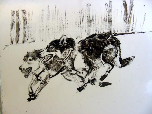 5504170518 44a5b5630a Iditarod 2011