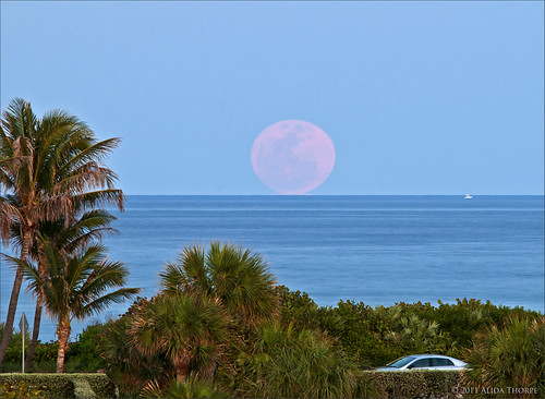 pink moonrise by Alida's Photos