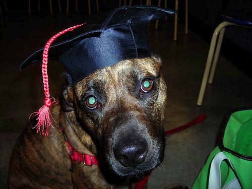 Bailey graduation