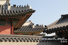 창덕궁/Changdeokgung/昌德宮