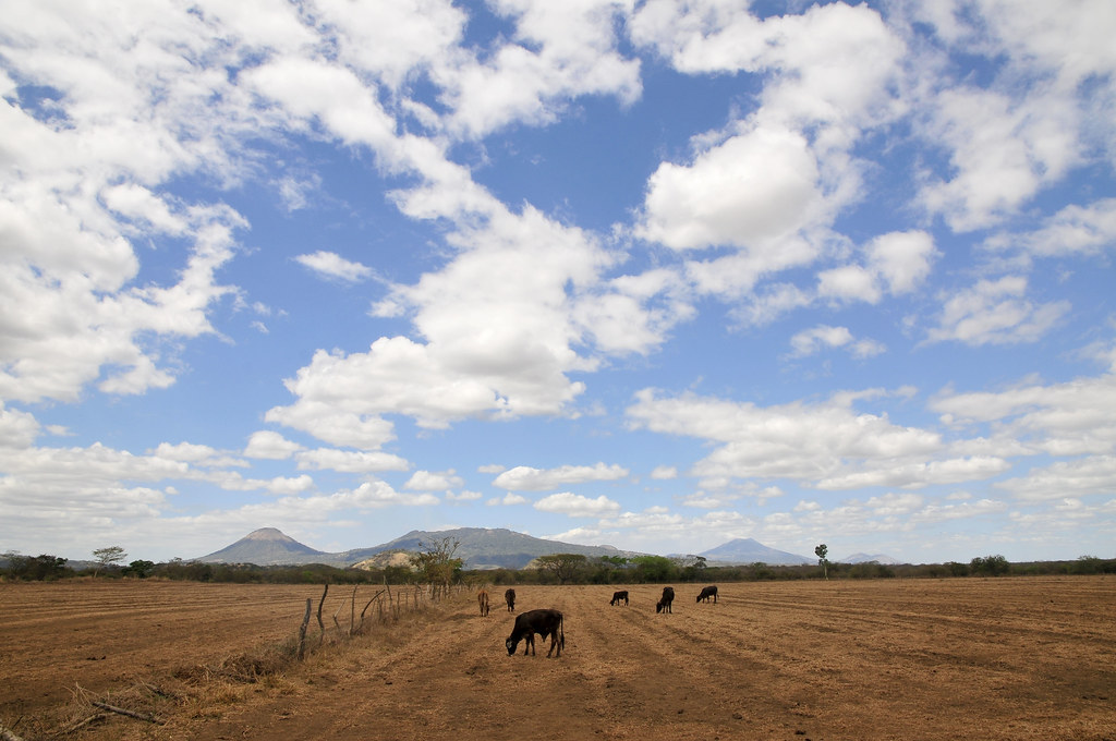 dry field in Kenya