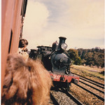 A trip to the NSW Rail Transport Museum