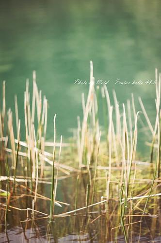 k-x 新山‧夢湖
