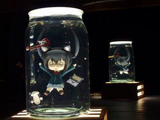 Nendoroid Case?