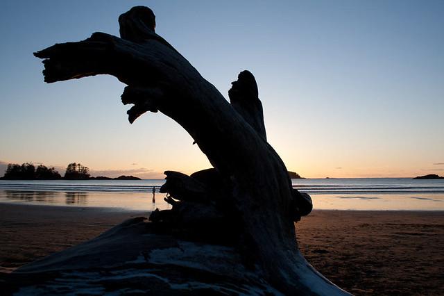 Playa de Tofino, Vancouver Island. British Columbia, Canadá.
