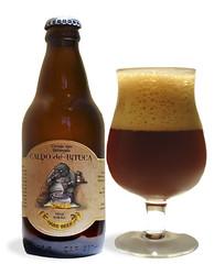 ale, beer glass, stout, bottle, beer bottle, drink, beer, alcoholic beverage,