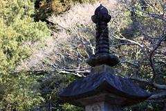 Garden Lantern / 灯籠(とうろう)