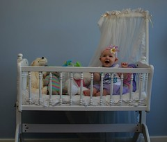 shelf(0.0), changing table(0.0), cage(0.0), furniture(1.0), cradle(1.0), room(1.0), infant bed(1.0), bed(1.0), nursery(1.0), baby products(1.0),