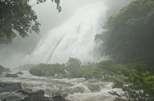 【写真】離島めぐり : 大川の滝