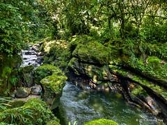 Reserva Rio Anzu