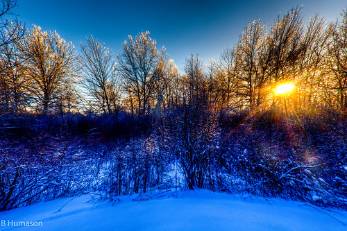 ohio sky cold colors sunrise woods champion fisheye lucisart nikond90 3shotbrkt 1685mmnikonlens