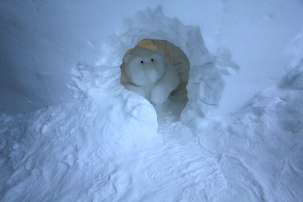 Polar Bear...?