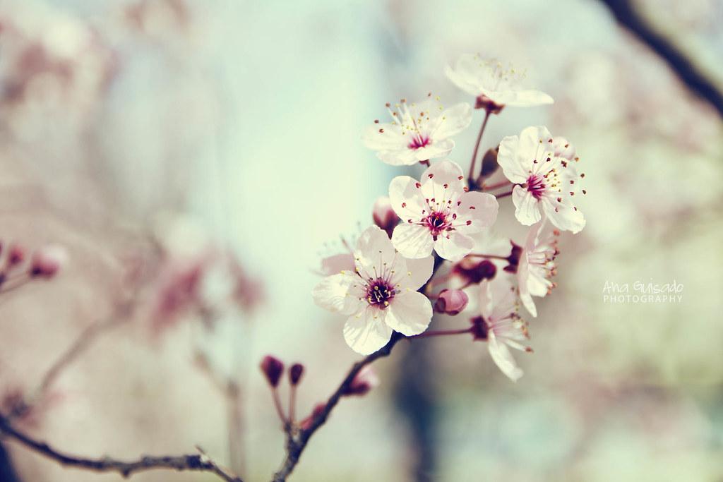 Spring already?