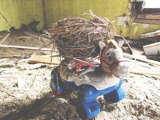 Nest on a Toy