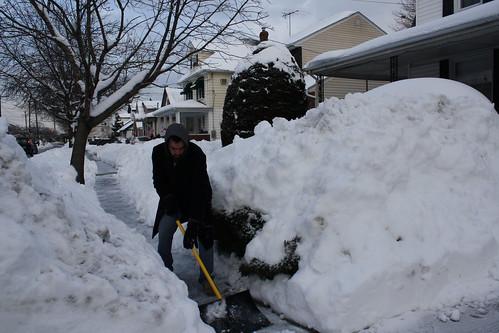January 29, 2011 Snow