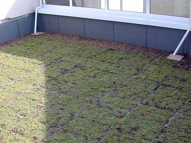 Toiture terrasse v g talis e pose de bacs pr v g talis s flickr photo - Toiture terrasse vegetalisee ...
