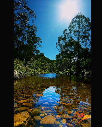 "blue reflection nature canon river landscape eos march aperture native ngc australia victoria 1001nights gisborne lerderderg 2011 lerderdergriver lerderdergstatepark 550d parksvictoria lerderderggorge efs1855mmf3556is ""flickraward"" daarklands 1001nightsmagiccity mygearandme"