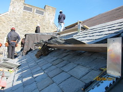 roofer, roof,