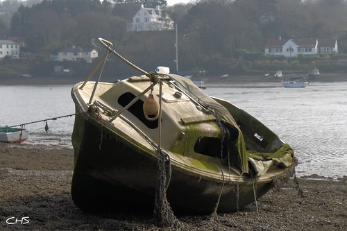 """Molly"" - Mylor Creek, River Fal, Cornwall by Stocker Images"