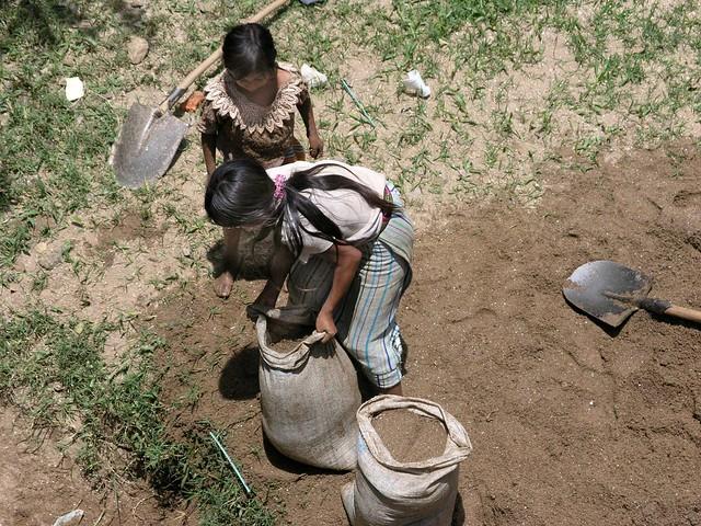 Girls filling sacks with sand - Niñas llenado bolsas con arena;  cerca de Joyabaj, El Quiché, Guatemala