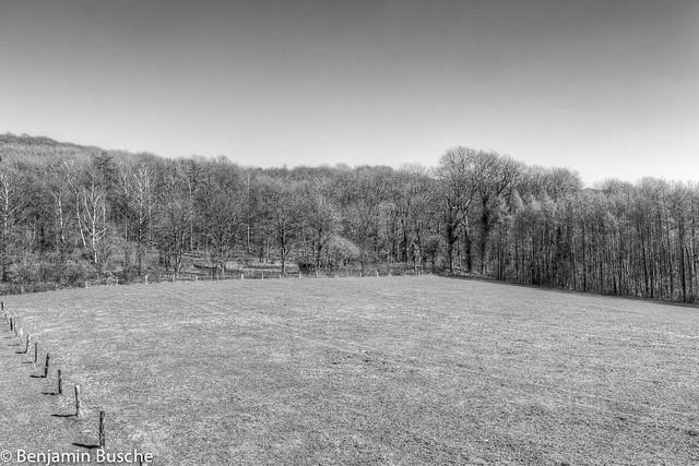 Header of silent hill