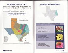 Texas Wildflower Zones