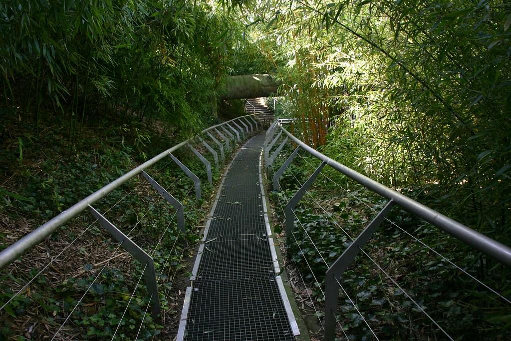 Le jardin du bambou noel 2017 - Jardin de bambou cannes ...