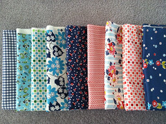 Denyse Schmidt's line for Joann Fabric.
