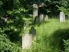 Bechyně, židovský hřbitov, foto: Petr Nejedlý