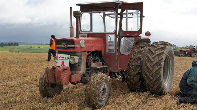 1964 Massey Ferguson 135 : Massey ferguson tractor you have got to