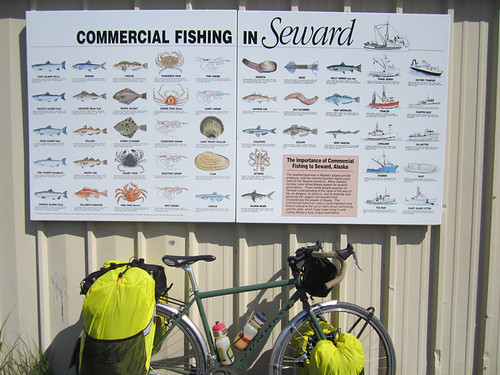 <p>Gunnar Grand Tour sitting in front of the Seward Fish Chart in Seward AK. This is Leonard Fancher's ride.   Painted Monetary Green.  60411</p>