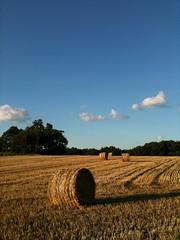 hay bail in a field 3 - Photo of Auty