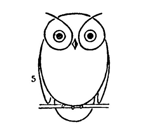 Draw An Owl Flickr Photo Sharing