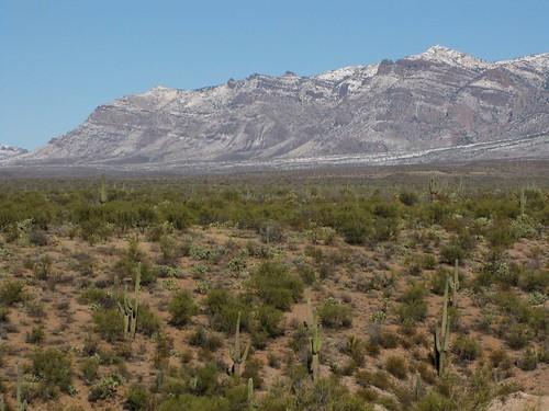 arizona usa mountains landscapes flickr desert unitedstatesofamerica gps 2011 panoramio camcanonpsxs10