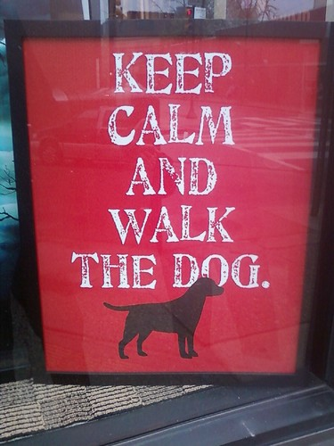 keep calm and wak the dog