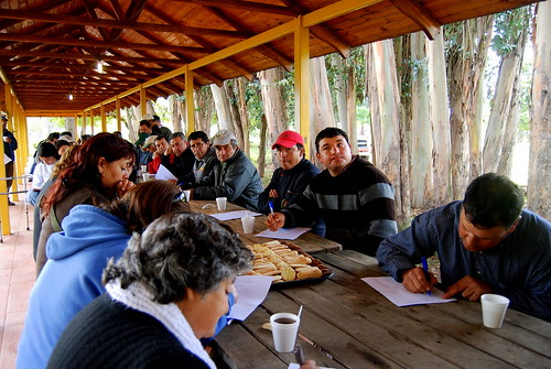 Importantes logros ha conseguido el prodesal comunal for Viveros en paine