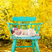 Newborn-outdoor-013