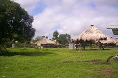 Tue, 06/01/2004 - 08:33 - Comunidad Embera, Panama