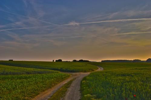 road sunrise landscape dawn hiking trail fields hdr tranquillity huldenberg