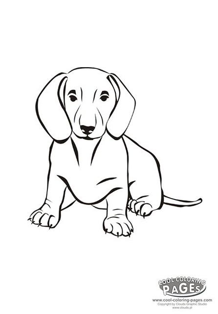 The Dog Free Coloring Pages In Hitizexyt Github Com