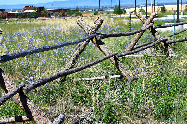 Buck fence laramie a shot of east town