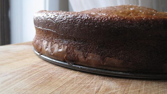 Orange Olive-oil Cake