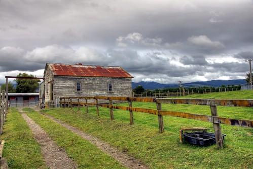 Old farm building, Levin, Manawatu, New Zealand