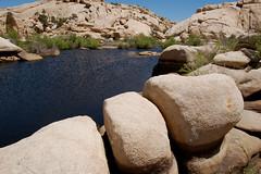 Barker Dam Trail