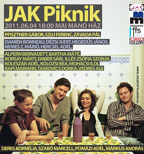 JAK Piknik 2011