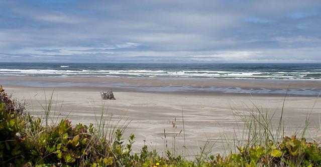 oregon.beach.1403