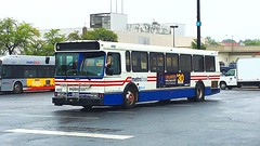WMATA Metrobus 1997 Orion V #4412