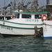 boat trip to Aransas NWR