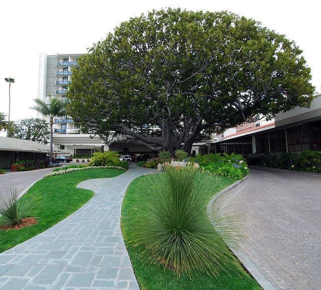 Fairmont Hotel Newport Beach Ca