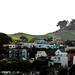 Bernal Far East